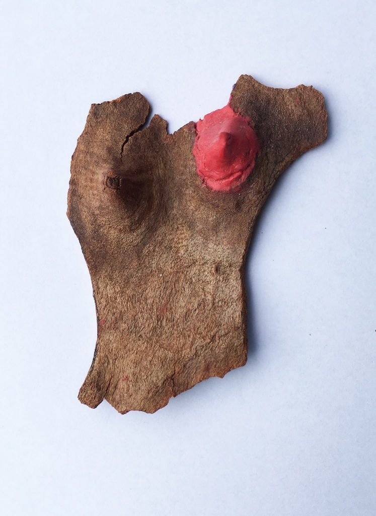 Marijana Tadic, 'Tidying up Nature', 2017, Eucalyptus bark, red silicone, 23x23cm. Courtesy the artist.