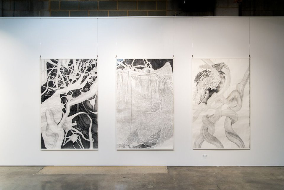 'Under the Skin', installation view, praxis ARTSPACE, June 2018. Courtesy the Gallery.