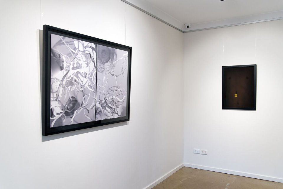 Selected work by Leo Greenfield for 'Under the Skin', installation view, praxis ARTSPACE, June 2018. Courtesy the Gallery.
