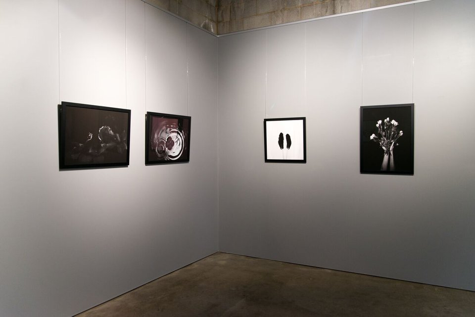 'Internal Botany', installation view, praxis ARTSPACE, June 2018. Courtesy the Gallery.