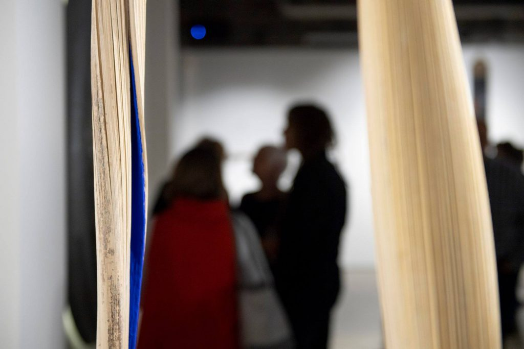 'Best After' opening night, praxis ARTSPACE, August 2018. Photography by Iain Bond.