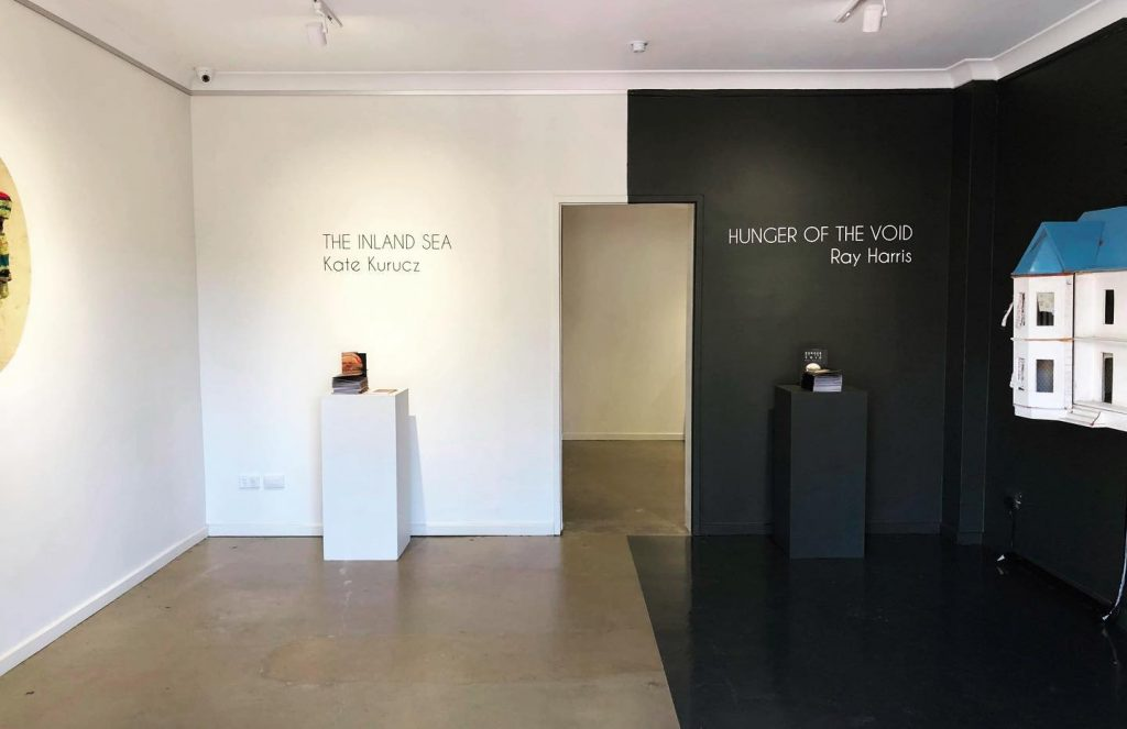 Foyer Gallery, praxis ARTSPACE. (Left) 'The Inland Sea', Kate Kurucz. 'Hunger of the Void', Ray Harris. Photo courtesy the gallery.