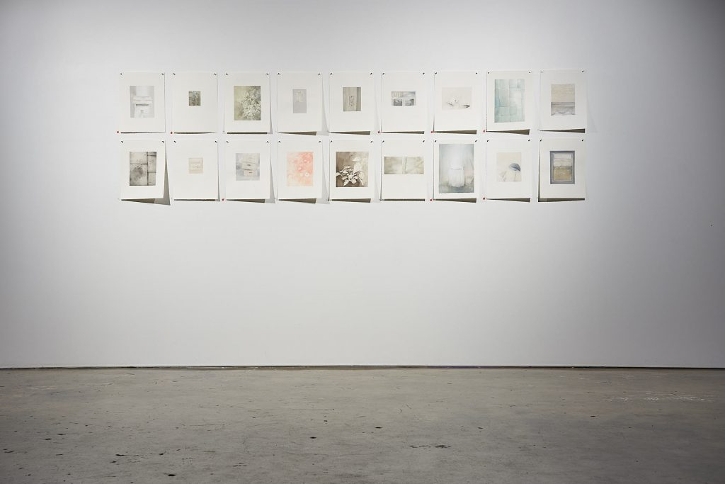 Installation view of artwork series by Talia Wignall, watercolour and gouache, Praxis Artspace. Photography by Sam Roberts.