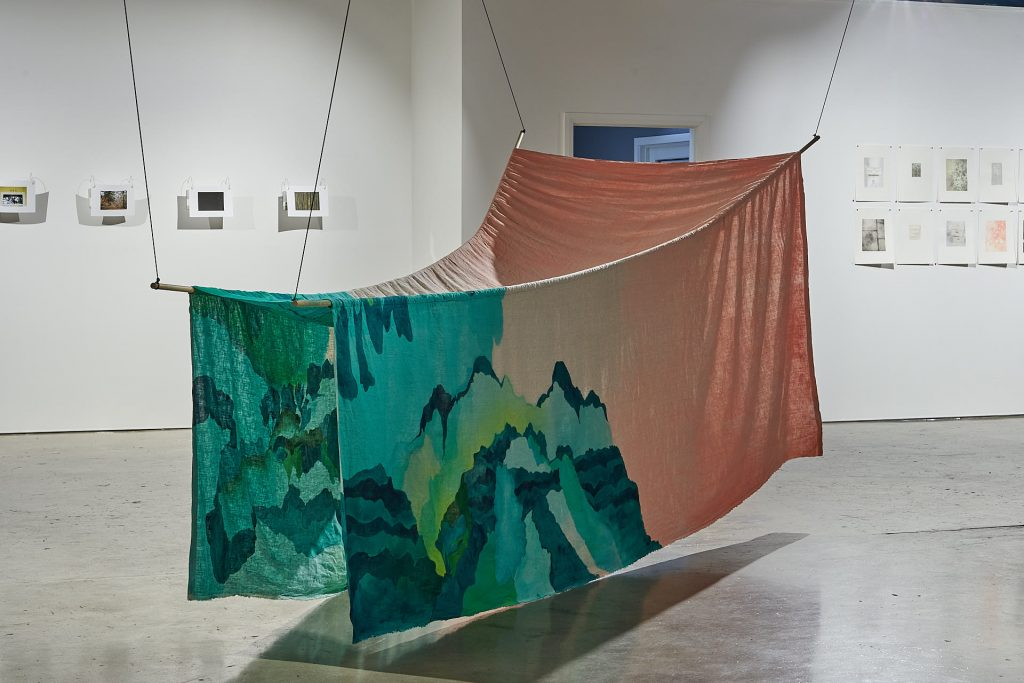'Life Forms' installation view, Praxis Artspace, November 2020. Photography by Sam Roberts.