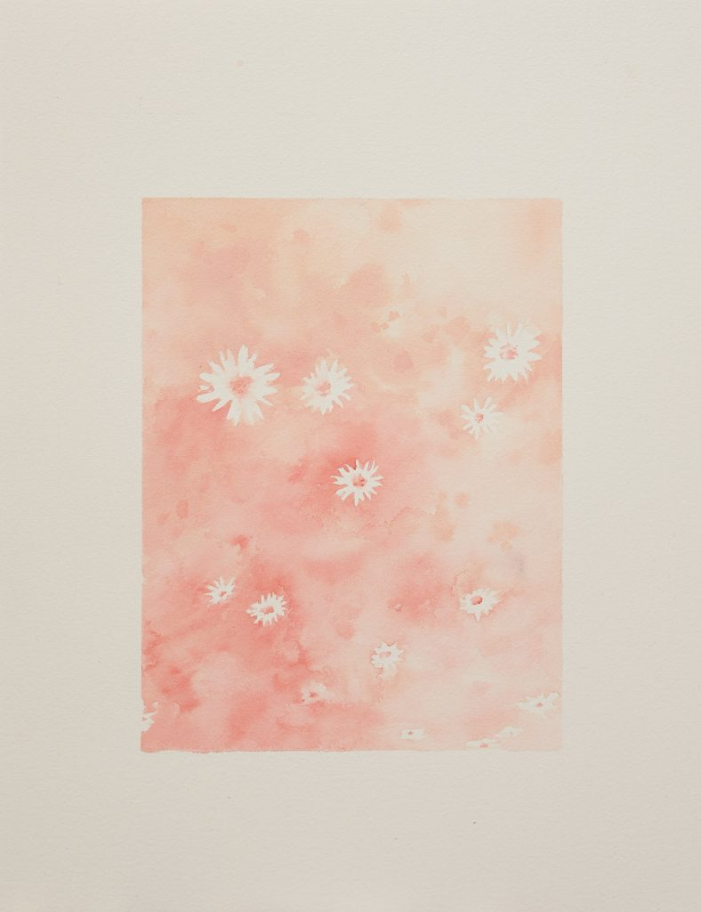 Talia Wignall, 'Daisies', 2020, watercolour and gouache on paper, 40x30cm. Photography by Sam Roberts